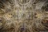 SassCeiling (Marco Pacini) Tags: marcopaciniphoto ceiling architecture architettura archilovers zenital zenitale nikon nikonitalia nikoncameras firenze toscana