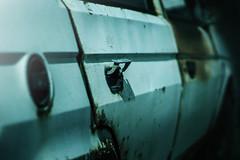 Abandoned Škoda Favorit (Luky Rych) Tags: abandoned car canon 50mm rat rusty favorit škoda worldcars