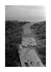 Nikkormat_002 (dcanalogue) Tags: camera seascape slr classic film vintage lens landscape 50mm nikon h pre filmcamera nikkor 50 rodinal non ai lenses nikkormat f20 ftn adox adonal classicblackwhite silvermax analogicait