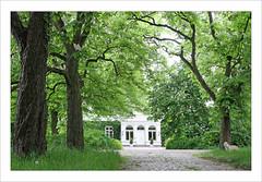Grünzeug (BegMeil44) Tags: manoir schleswigholstein manorhouse allee kastanien herrenhaus bliestorf gutbliestorf