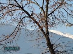 34 / Bansko (Nontas K) Tags: winter sky sun tree landscapes travels december village bulgaria bansko   pirinmountain 2013           nontask