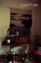 Recuerdos (CoplaStudio) Tags: tapices wallhanging