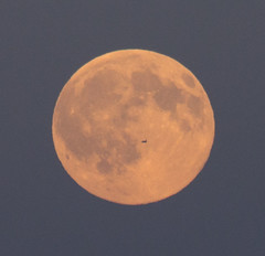 1. Rising Full Moon with tiny fly-by 19 July 2016 (Sculptor Lil) Tags: moon london fullmoon moonrise handheld beltofvenus flyby canon700d dslrsingleexposure