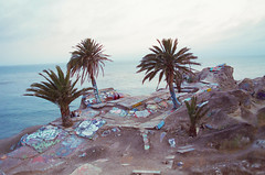 San Pedro, California (aTROSSity 22) Tags: atrossityphotography photosbytylerross tylerrossphotographer 35mmfilm cinestill cinestill800 filmphotography filmisnotdead filmphoto canoncameras staybrokeshootfilm film scannedimages originalphotography 35mm ranchopalosverdes oceanview california sunkencity sanpedro cliffside