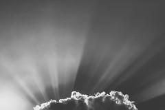 Shine! (A. Aleksandraviius) Tags: sun clouds sky bw shine