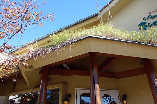 屋根を見ますと草屋根になっています。|ラシェット・ブランシュ湘南長後本店