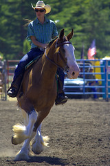 Gallop (swong95765) Tags: horse animal woman rider gallop perform competition