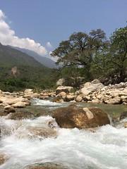Vergel  (artx_let) Tags: naturaleza nature ro agua tranquilidad yosondua yosonda