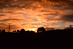 Cheeky setting sun burst through the trees (explored) (Matt Burke) Tags: sky orange tree clouds dark evening mood pylon burst varied ssun