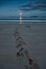 Moonwalk (ianrwmccracken) Tags: moon moonrise river forth fife scotland beach sea