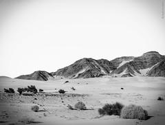 San Luis Gonzaga, Baja California, 2016 (Sal Martnez // Photojournalist) Tags: san luis gonzaga baja california beach playa rancho grande night stars paradise almost mediterranean mar sea vacations