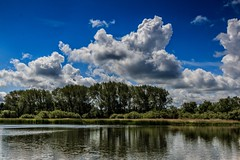 Clouds over the lake (Anthony Plancherel) Tags: buckinghamshire category england landscape marsworthreservoir places travel canon1585mm canon70d canon travelphotography scenery scenic landscapephotography reflection clouds whiteclouds fluffyclouds sky bluesky lake water trees reeds britain greatbritain british english