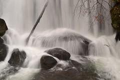 Whatcom Falls, Washington (careth@2012) Tags: waterfall whatcom whatcomfalls washington nature flow scene scenery scenic view