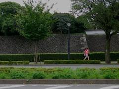 running_1260183 (strange_hair) Tags: run running girl pink road tokyo japan street green