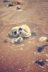 Broadstairs, Kent (Josieroo13) Tags: ocean uk sea england abstract beach water rock skull coast chalk kent coastal shore goonies skullrock shorleline