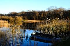 NORFOLK IMPRESSIONS III (Simon R Brook) Tags: reeds boat nikon norfolk broads 18200mm ormesby d7000 simonrbrook