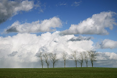 The Sky Is The Limit (parkerbernd) Tags: trees light sky field clouds germany landscape lumix thringen fantastic angle low meadow row panasonic sachsen limit vogtland gx1