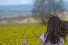 DSC_0124 (Linguaprof) Tags: sighisoara brasso tgmures rastolita targumures szentharomsag segesvar nagyszeben muntiifagaras marosvasarhely fogarasihavasok ratosnya nyaradmente raulmures dicsszentmrton segesvarivar jodvolgye marosvolgye kknyes