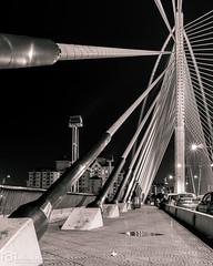 Lines (mtux) Tags: bridge blackandwhite lines night lights pentax malaysia putrajaya k3 justpentax sriwawasanbridge pentaxsmcpda21mmf32al