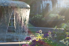 Evening light in the Park (evisdotter) Tags: park flowers light water fountain reflections evening mood blommor fontn