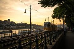 Along the Danube (michael.balint) Tags: budapest hungary europe danube river train tram sunset walk golden glow a7rii contax cy zeiss lpvignette
