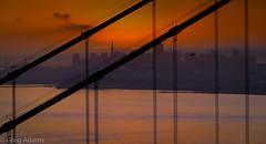Golden Golden Gate (Greg Adams Photography) Tags: sf sfbay sanfrancisco sanfranciscobay california calif northerncalifornia bridge goldengatebridge sunrise dawn hhsc2000 travel silhouette silhouettes golden orange red yellow colors colorful 2015