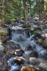 Chicago creek ..mt Evans Colorado (Pattys-photos) Tags: woodchuck