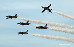 160408_112_BreitlingJetTeam (AgentADQ) Tags: show sun plane airplane fun team tour expo czech florida air jet n airshow american lakeland albatros trainer aero flyin l39 breitling 2016