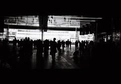 (lemonhats) Tags: olympusmjupanorama olympus3535 fujifilmneopanacros100 kodakd76 vintagecamera classiccamera automatic 35mmcompact autofocus 35mmf35 fixedlens primelens wideprime iso100 35mmfilm blackandwhite printfilm homedevelopment legacyphotography analoguephotography filmphotography filmisnotdead filmisalive shootfilm believeinfilm filmcommunity fpper walking yaesu tokyostation japan reflections backlit silhouette vanishingpoint