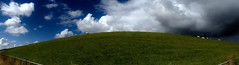 Sun and clouds alternated (BrigitteE1) Tags: blue light sea summer sky panorama sun white green netherlands sunshine weather clouds outside coast europe flickr sheep pasture northsea gras dyke nordsee friesland niederlande kste paddock deich pasturage sunandcloudsalternated