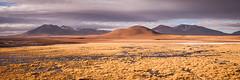 Marshy (ckocur) Tags: chile atacama sanpedrodeatacama northernchile atacamadesert