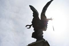 Angel (Nadia Massacani) Tags: colchester england angel sun sunnyday uk summer summer2016 flickrtravelaward flickr canon 350d