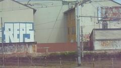 154 (en-ri) Tags: reps fias nero bianco blu panda throwup milano wall muro graffiti writing video gees fayer cto
