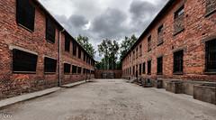Paredon (Perurena) Tags: paredon pared wall fusilamientos fusiles asesinatos nazis judios camposdeconcentración exterminio genocidio auswitch polonia