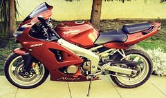 zzr600-4 (AAPP Diseño Gráfico / Fotografía) Tags: kawasaki zzr 4 cilindros bike superbike zr600 rr