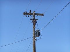 West Central Electric - Presho, SD (NDLineGeek) Tags: 2400v
