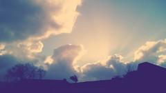 Luces en basural colonial. (Felipe Smides) Tags: basura colonialismo sunset atardecer valdivia despojo mapuche territorio wallmapu fuerte niebla felipesmides smides