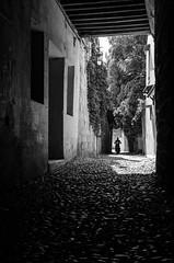 Bike in narrow Rhodes (Luisen Rodrigo) Tags: rodos rhodes scooter narrow oldtown