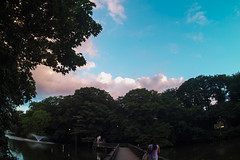 SDQ_3417lr (yoshitoshi ABe) Tags: 20160904   sdquattro sigma15mmf28exdgdiagonalfisheye