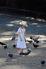 Timeless summer (jeremyhughes) Tags: outdoor london bloomsbury bedfordsquare city urban square park child pigeons feedingthepigeons childhood timeless hat lace lacy birds bird feeding summer evening shade lightandshade sunshineandshade nikon d750 nikkor 80200mmf28d candid unposed frock dress