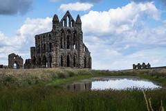 pond (pamelaadam) Tags: geolat54488319 geolon0607927 thebiggestgroup fotolog digital kirk building abbey whitbyabbey whitby engerlandshire faith spirituality
