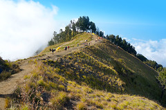 pelawangan sembalun camp (sydeen) Tags: blue outdoor hiking cloud lombok indonesia grass people top clouds savana tent mountain sky nature camping landscape sembalun hiker pelawangan plawangan porter high hill light rinjani senaru walk