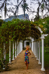 DSC_5433 (sergeysemendyaev) Tags: 2016 rio riodejaneiro brazil jardimbotanico botanicgarden     outdoor nature plants    green arc   beauty nikon