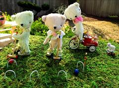 Teddy Bear Picnic (TutuBella) Tags: teddybears teddybearsbypaula~sweetredcottage croquet picnic fun happyweekendflickrfriends beautifulday