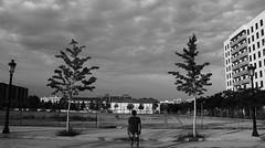Solars d'interior (lluiscn) Tags: rodatge videoclip clip escena solar solars solares edifici edificio arbres rboles farolas fanals llum nvols bn bw monochrome valncia safranar esquenes home man hombre espalda porta reixa verja valla tanca