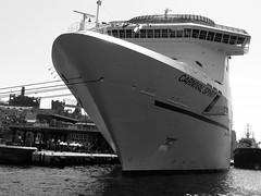 Lasting impressions (YAZMDG (16,000 images)) Tags: ship carnivalspirit cruiseship australia sydneyharbour