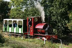 IMG_3290 (Hampton & Kempton Waterworks Railway.) Tags: darent devon arrives loop