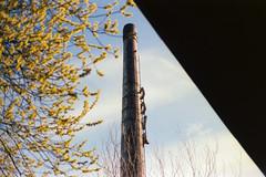 The Chimney (Bas Tempelman) Tags: blue roof chimney sky broken leaves spring nikon factory kodak 100 groningen leafs cova dak ektar f801s schoorsteen kapot