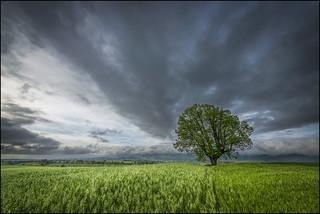 Se avecina tormenta 2