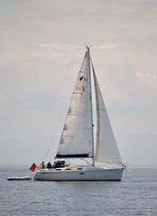 All at sea